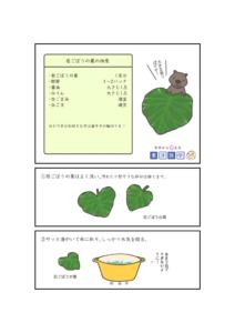 若ごぼうの葉の佃煮